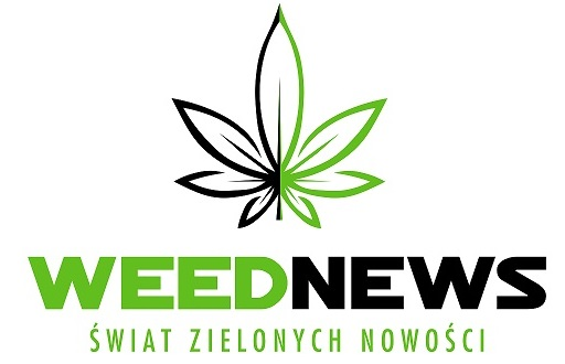 WEEDNEWS.PL