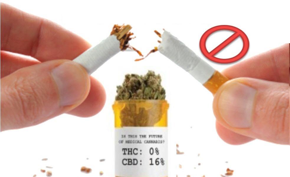 jak cbd pomaga rzucić palenie