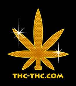 nasiona marihuany nasiona konopi