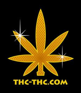 nasiona marihuany konopi