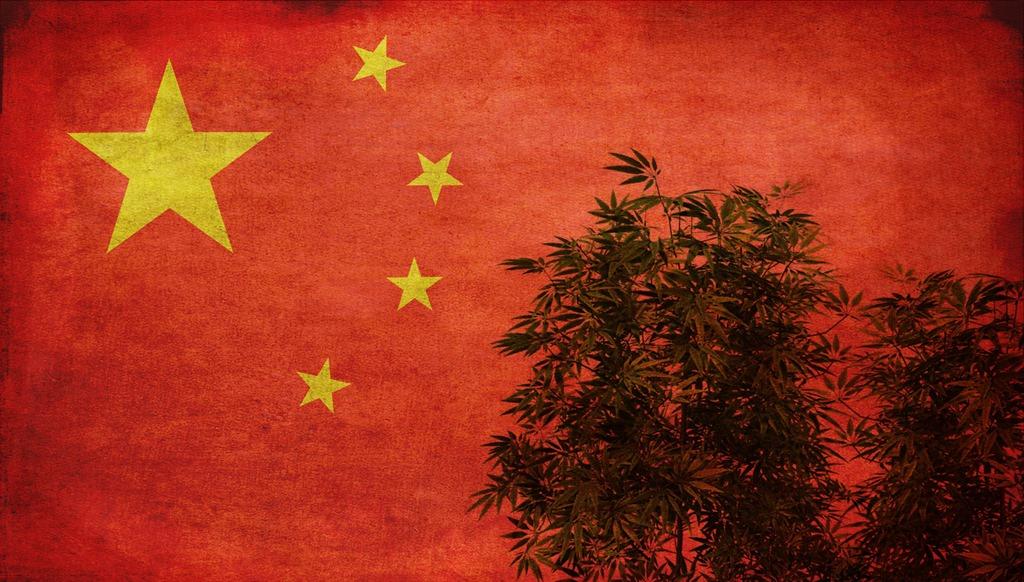 Chiny staną się po cichu globalnym konopnym liderem?