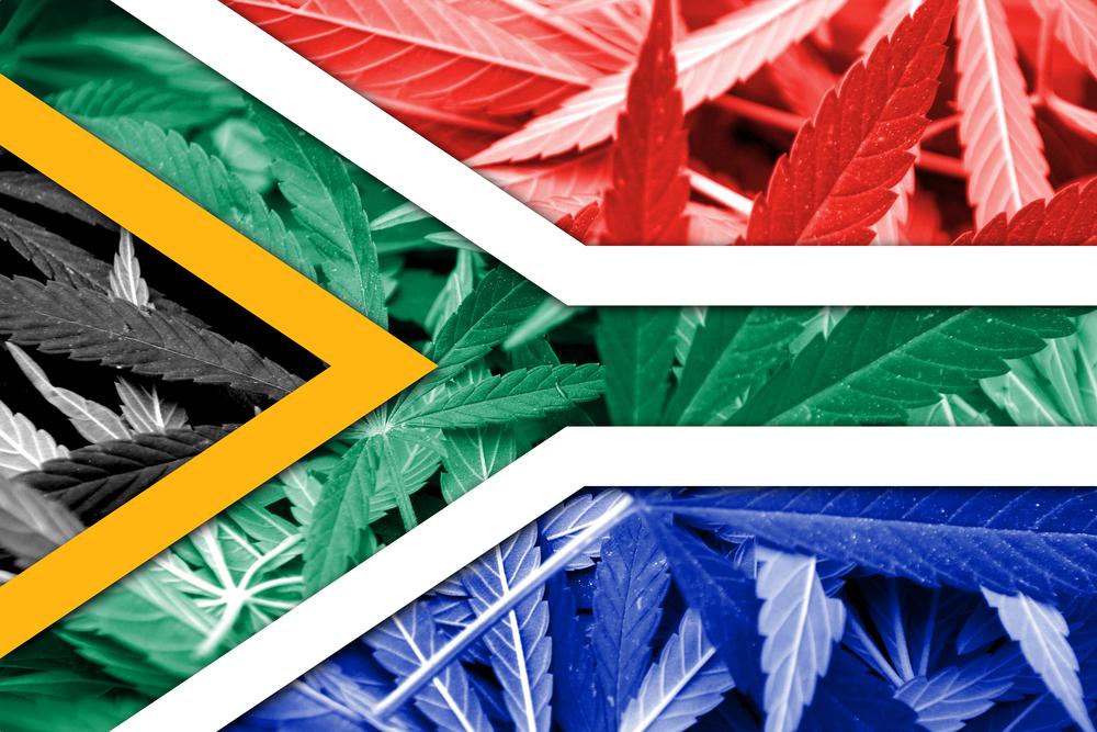 RPA zalegalizowało posiadanie marihuany
