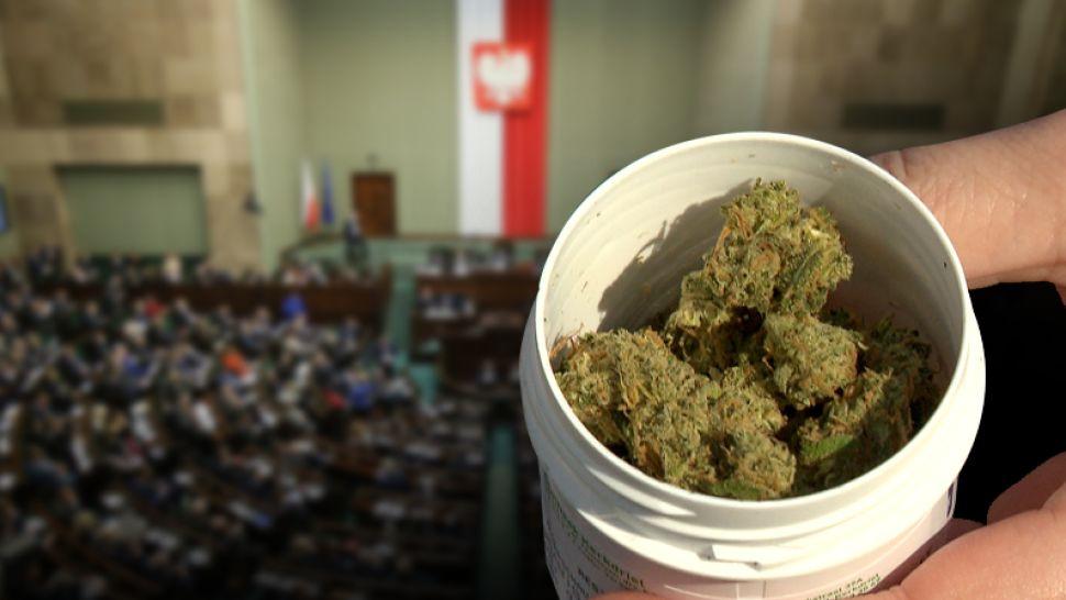 czy medyczna marihuana wkrotce trafi do aptek