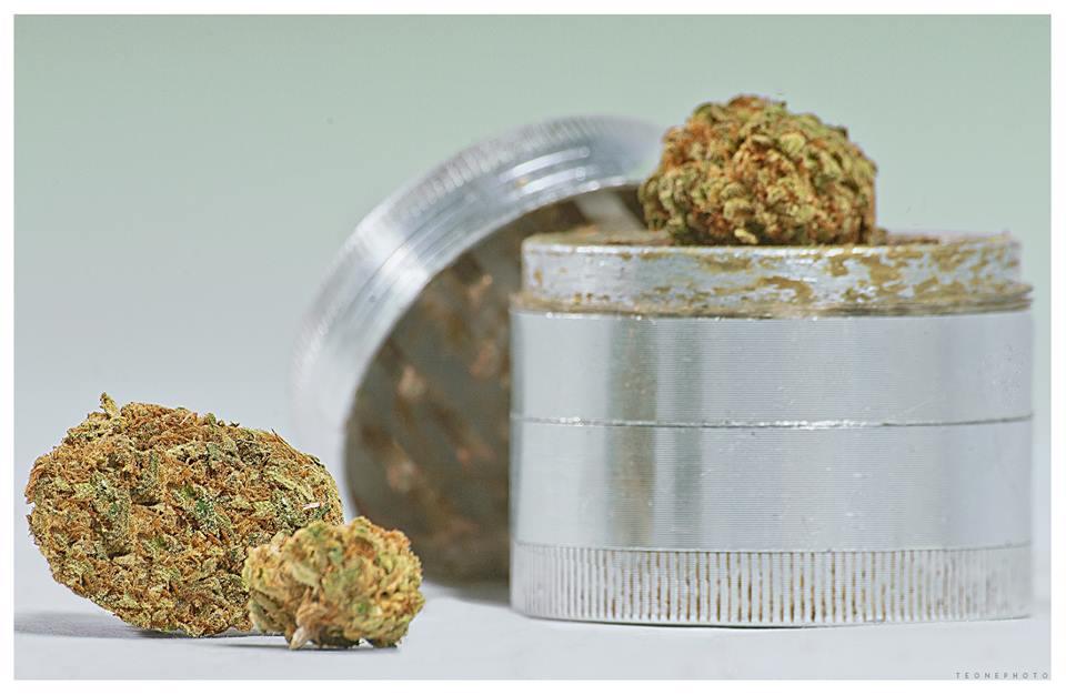 Legalizacja marihuany nie zwiększa szkodliwego spożycia ani spożycia wśród młodzieży