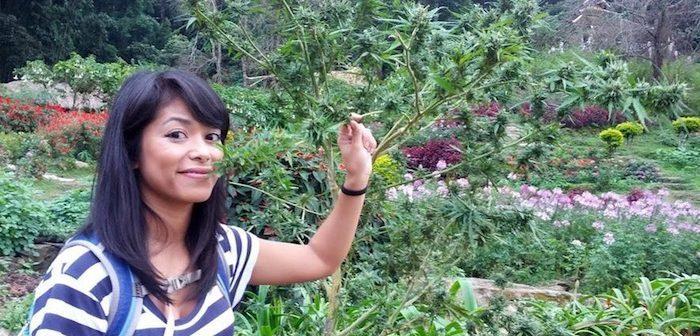 Tajlandia chce byc pierwszym azjatyckim krajem, ktory zalegalizuje medyczna marihuane