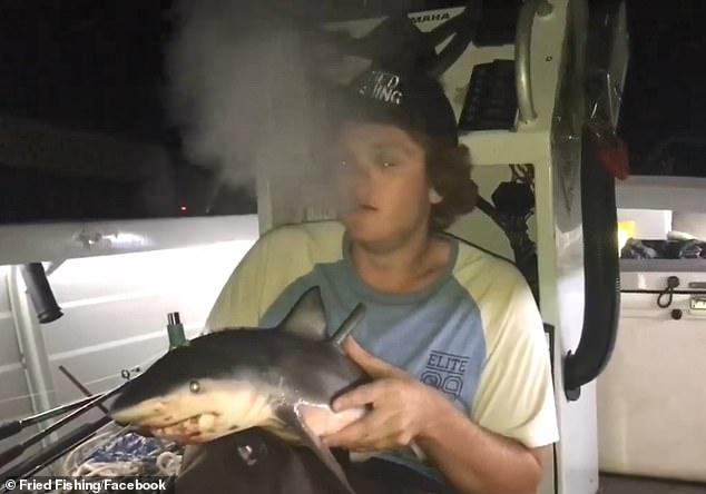 Wędkarz nagrał filmik jak pali z martwego rekina