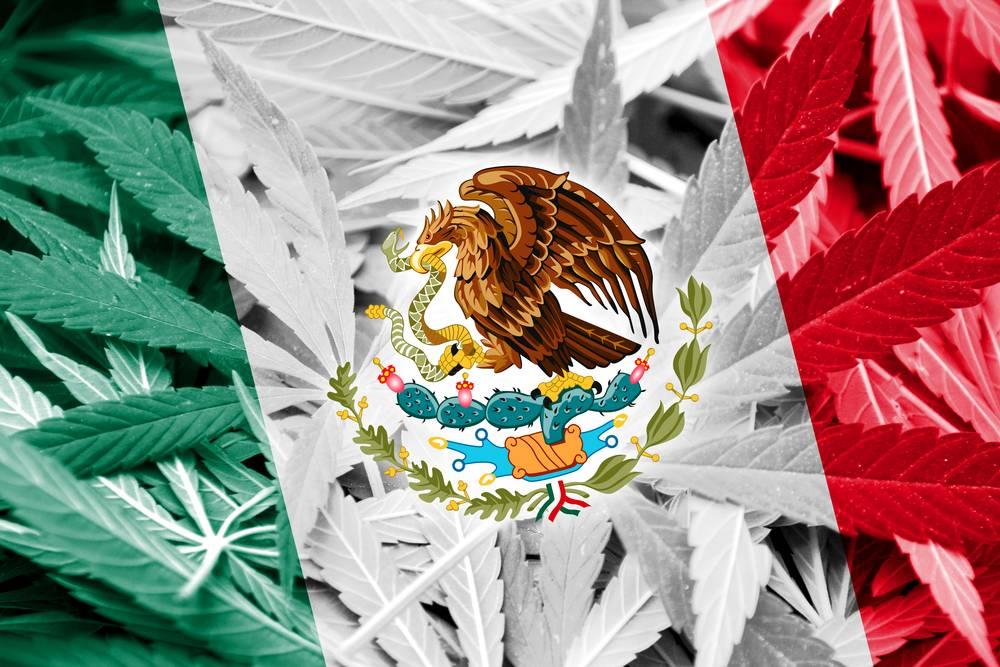 Meksykańska legalizacja marihuany