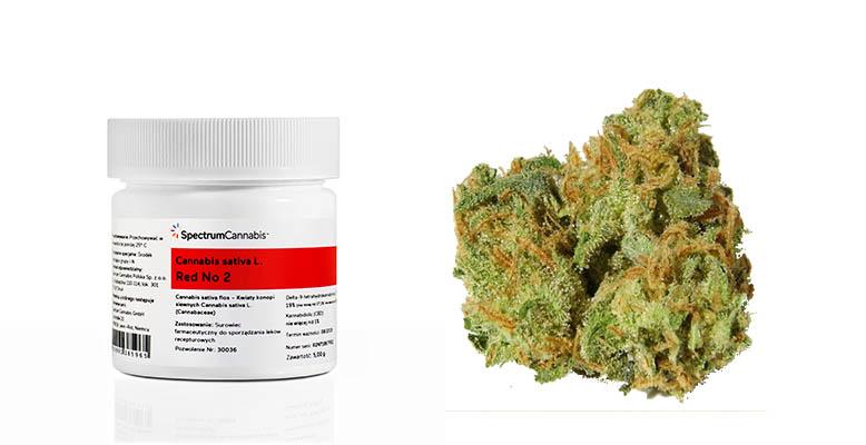 może zabraknąć medycznej marihuany