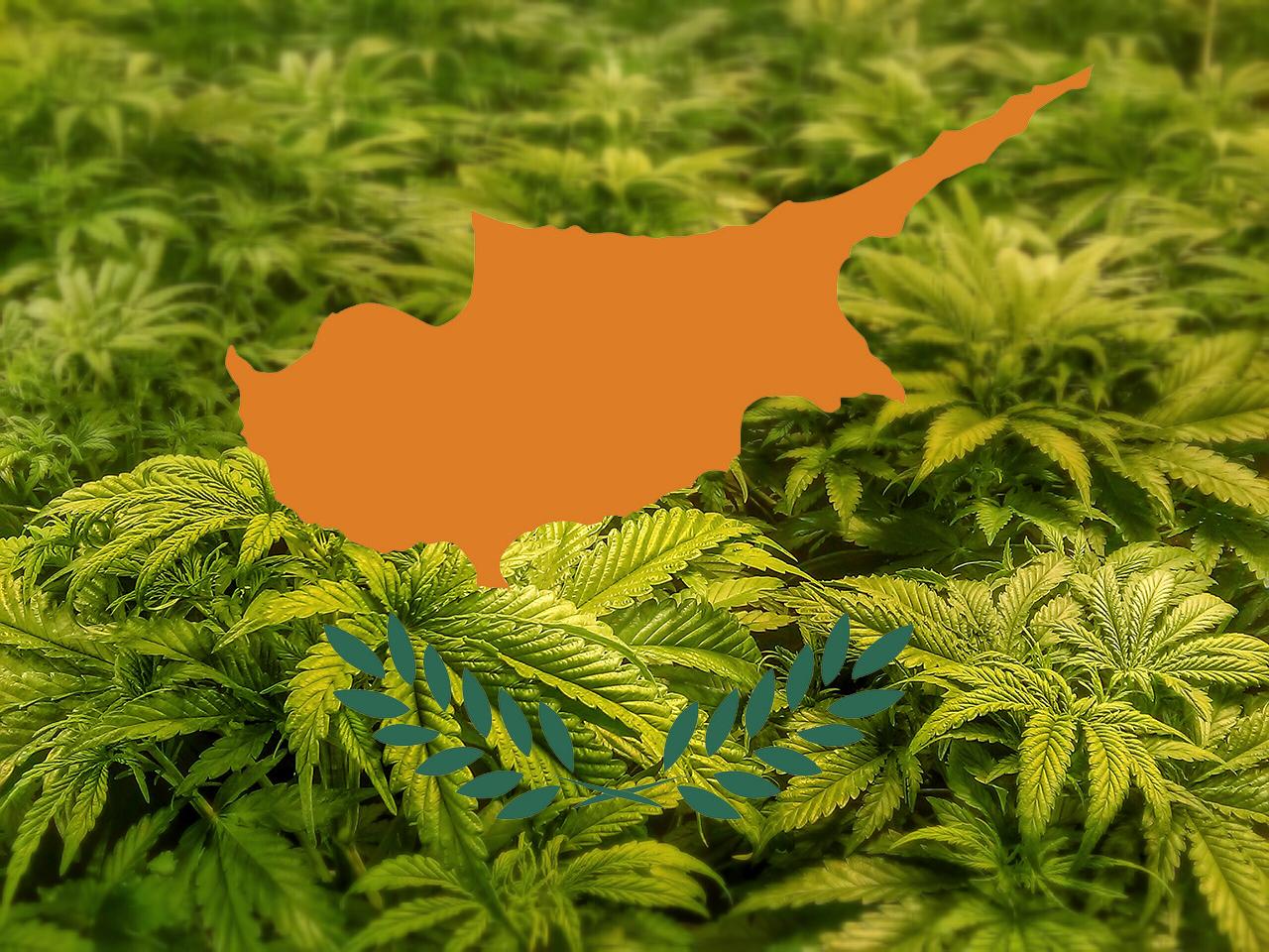 Cypr zalegalizował medyczną marihuanę