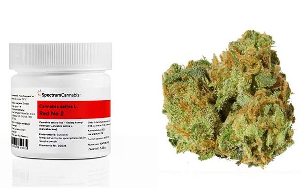 Kolejna partia medycznej marihuany
