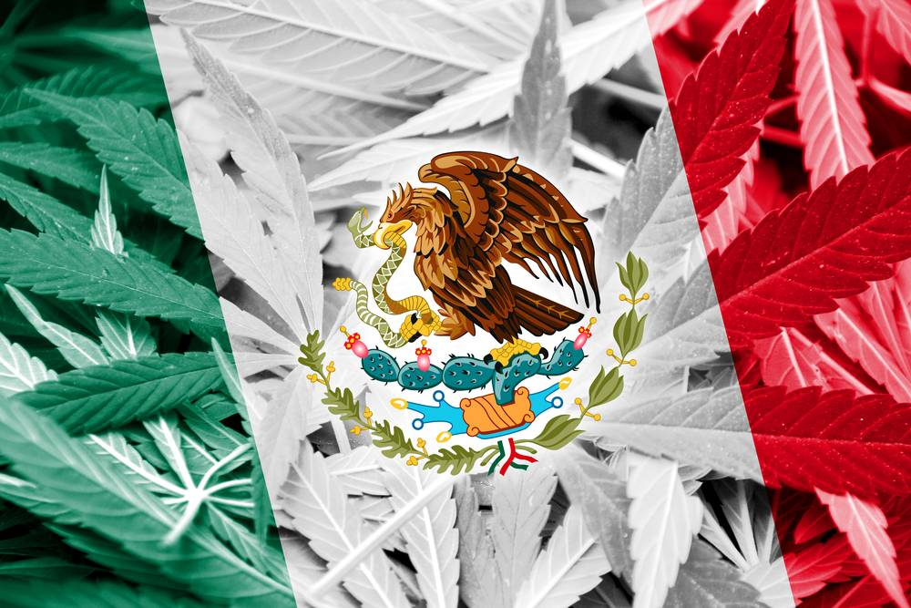 prezydent meksyku