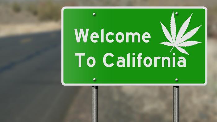 28 gramów marihuany