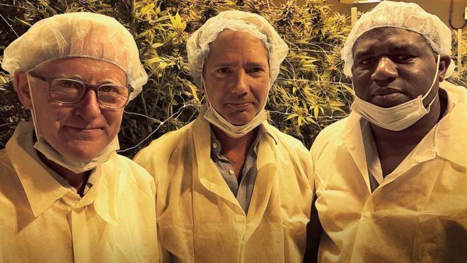 Wielka Brytania powinna zalegalizować marihuanę