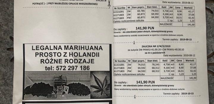 reklama marihuany