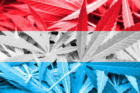 Legalizacja marihuany w Luksemburgu