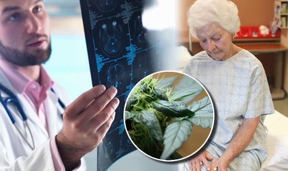 CBD może pomóc w walce z demencją
