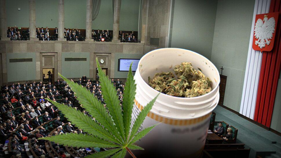 Marihuana w kampanii wyborczej