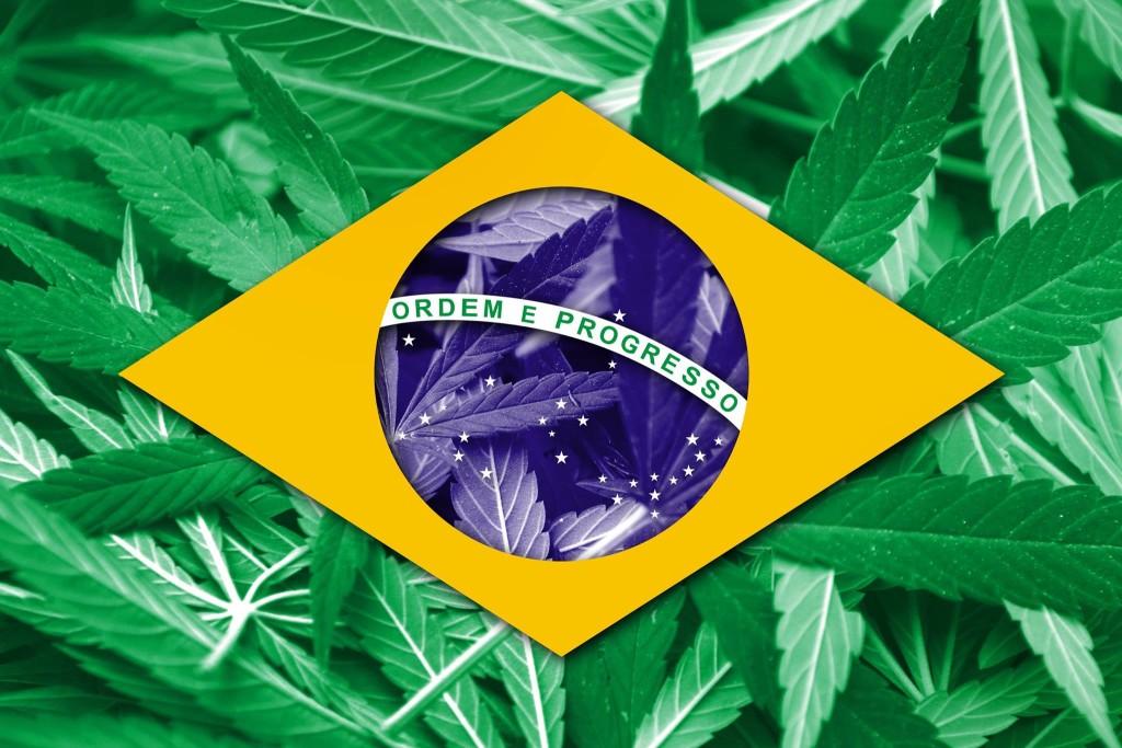 przepisy dotyczące medycznej marihuany