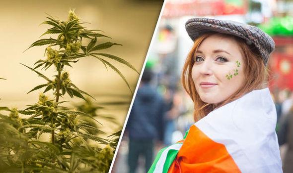 rząd Irlandii zatwierdził produkty Aurora Cannabis