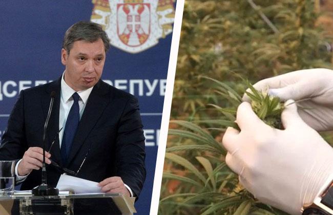 prezydent serbii