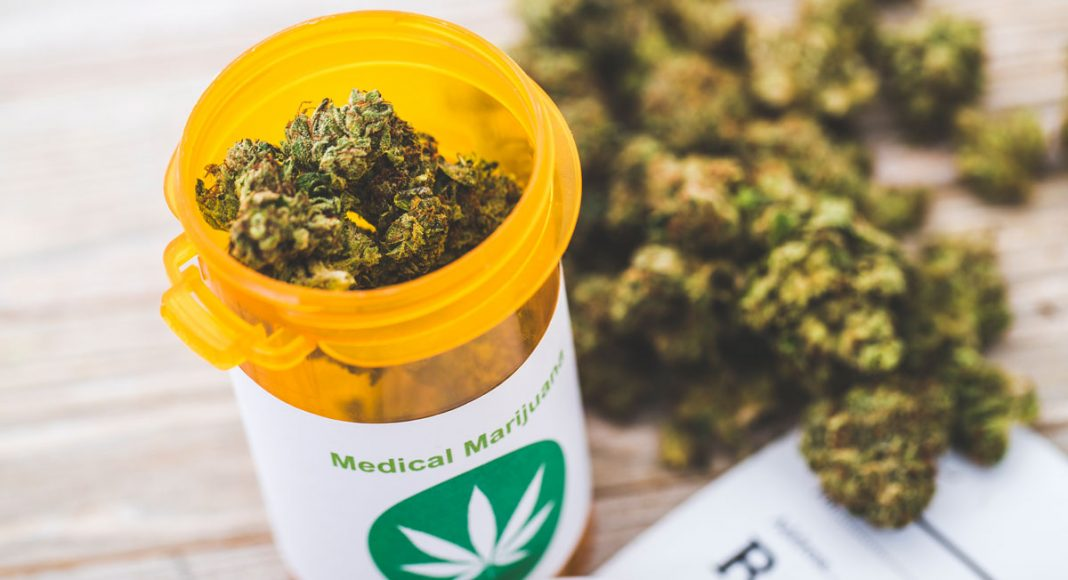odmiany medycznej marihuany