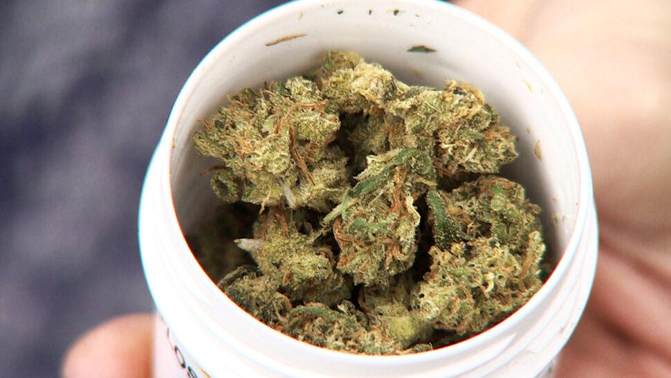 rodzaj medycznej marihuany