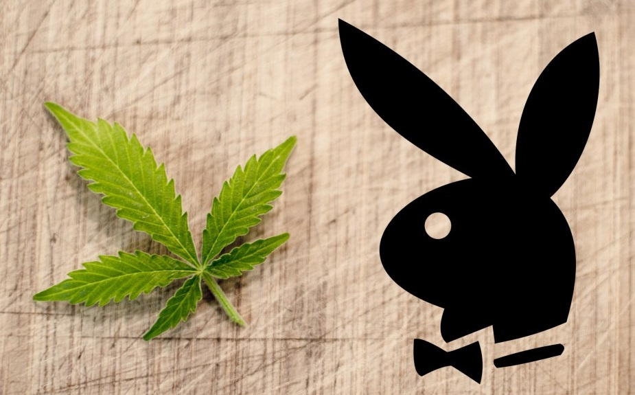 legalizację marihuany w USA