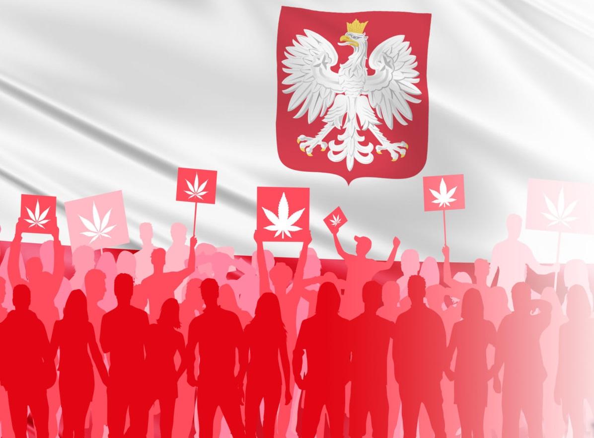 popiera dekryminalizację marihuany