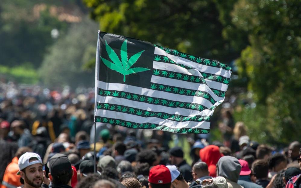 palic marihuanę