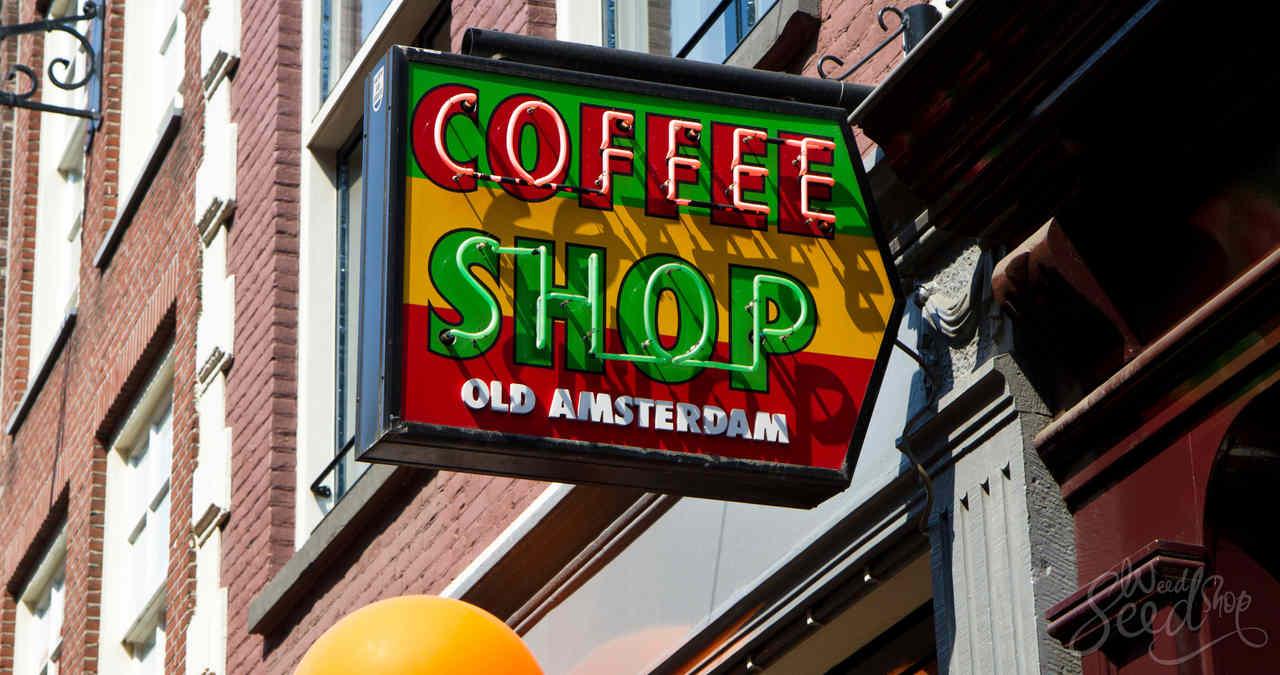 coffeeshopy w AmsterdamieAC