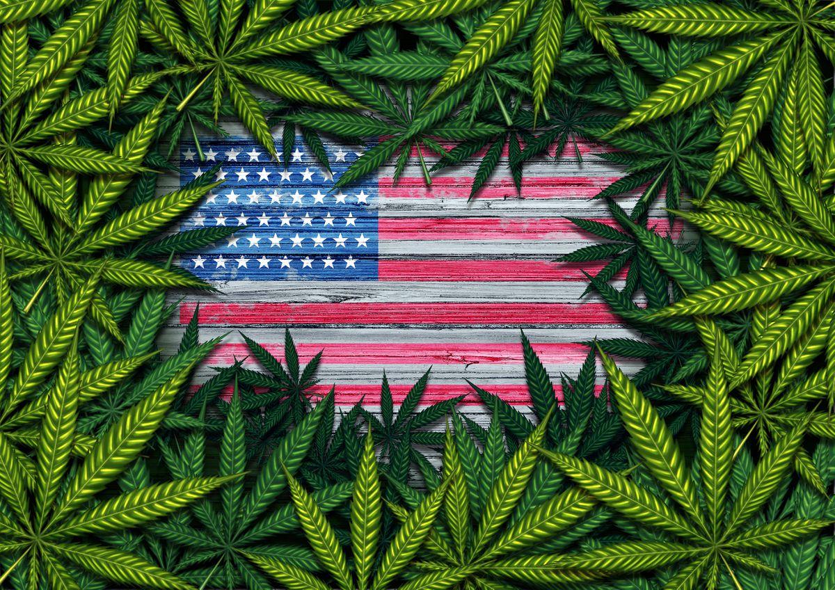 marihuana zalegalizowana federalnie