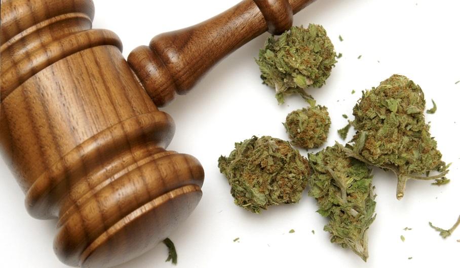 posiadanie marihuany w celach medycznych
